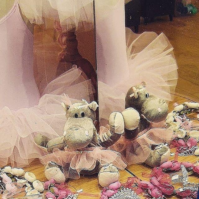 Czy hipopotam moze zostac baletnica?  czemu by nie ?hellip