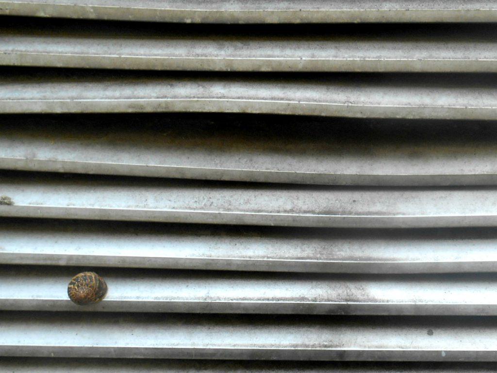 jak pisać bloga Kurs fotografii. 10 pomyłów na ciekawsze zdjęcia.
