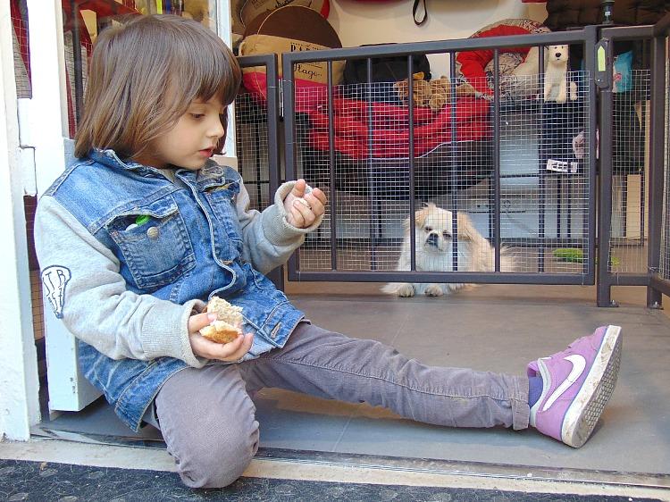 jakie zwierze do domu dla dziecka, co daje mi blogowanie