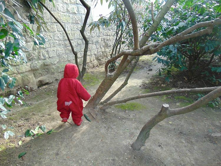 , podstawy fotografii, ładne zdjęcia, robienie zdjęć fotografia jak robić dobre zdjęcia, Czerwony kapturek ucieka do lasu. Wiem : dobre zdjęcie jest jak dobry żart. Jak trzeba je objaśniać, to przestaje być dobre.
