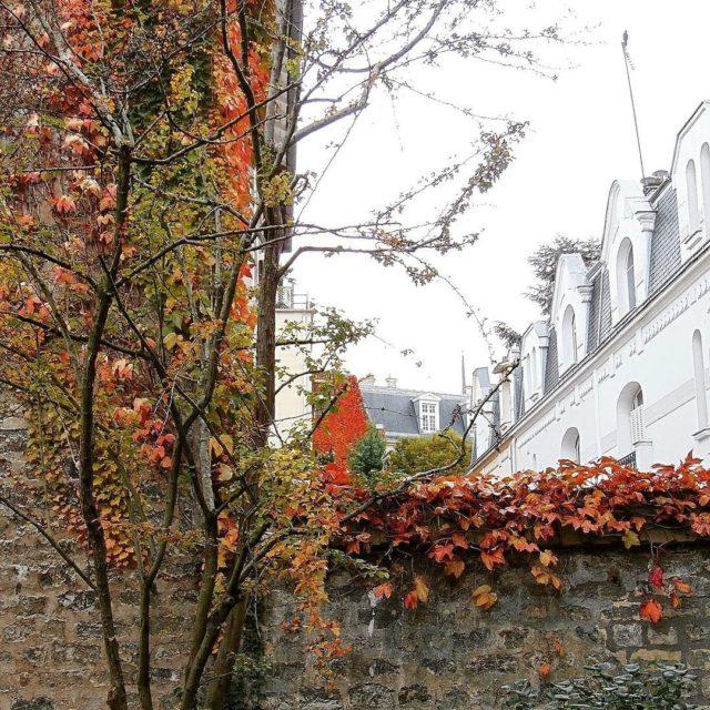 Jesiennie mi fotowyzwaniejestrudo igerparis igersfrance hellofrance superfrance topparisphoto parisienne parismonamourhellip