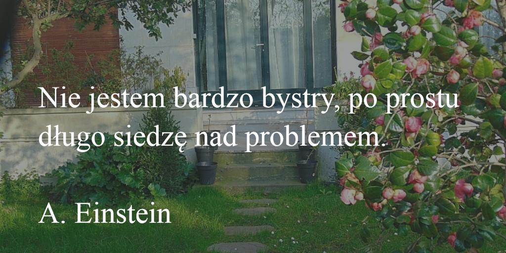 Porady blogowe, cytaty, ALbert Einstein
