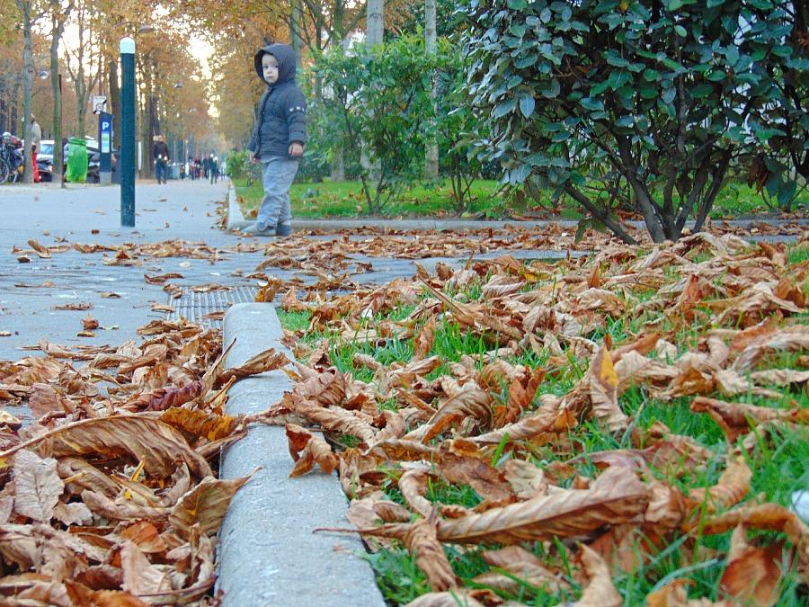 jak być zdrowym zimą i jesienią
