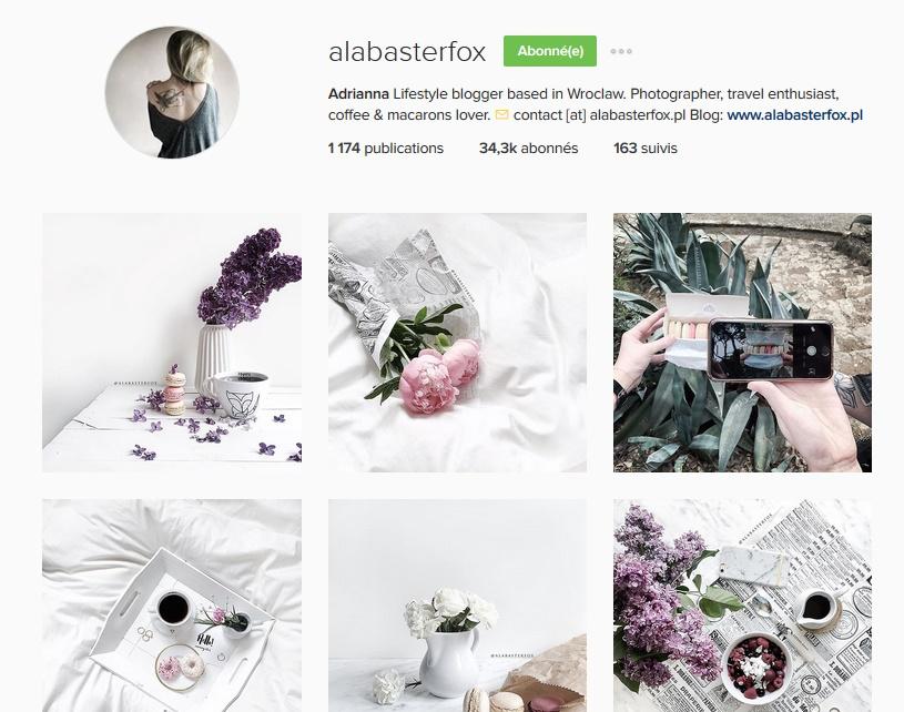 ALABASTERFOX Jak zdobyć popularność na Instagramie