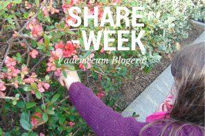 Dlaczego coraz trudniej przebić się w blogosferze? Mój Share Week.