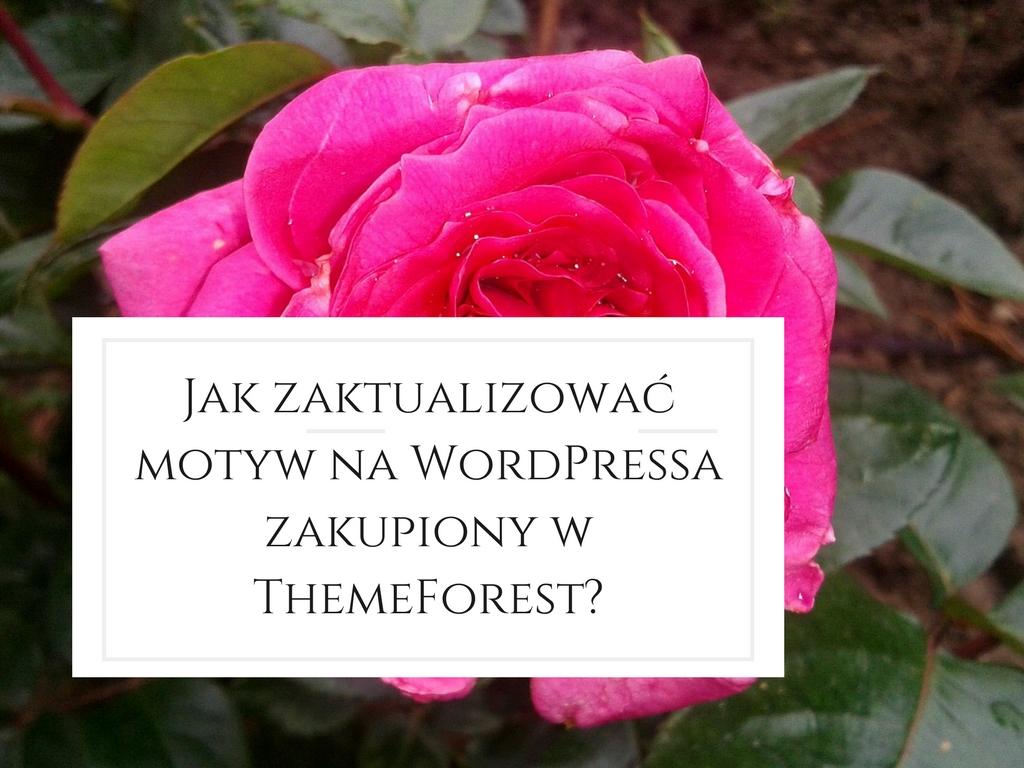 Jak zaktualizować motyw na Wordpressa zakupiony w ThemeForest?