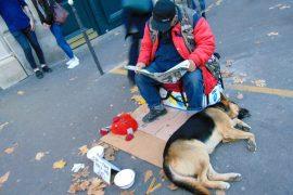 bezdomni w Polsce