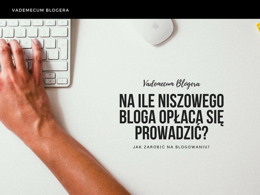Na ile niszowego bloga opłaca się prowadzić?