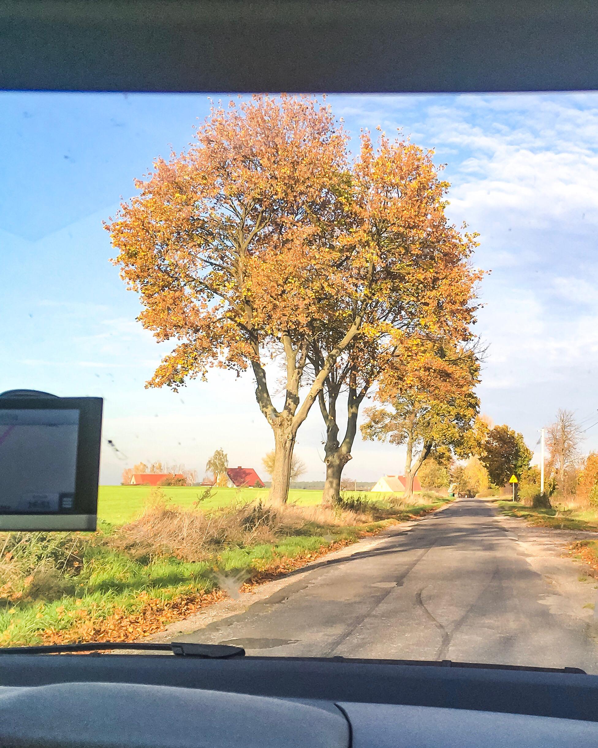 polska jesien