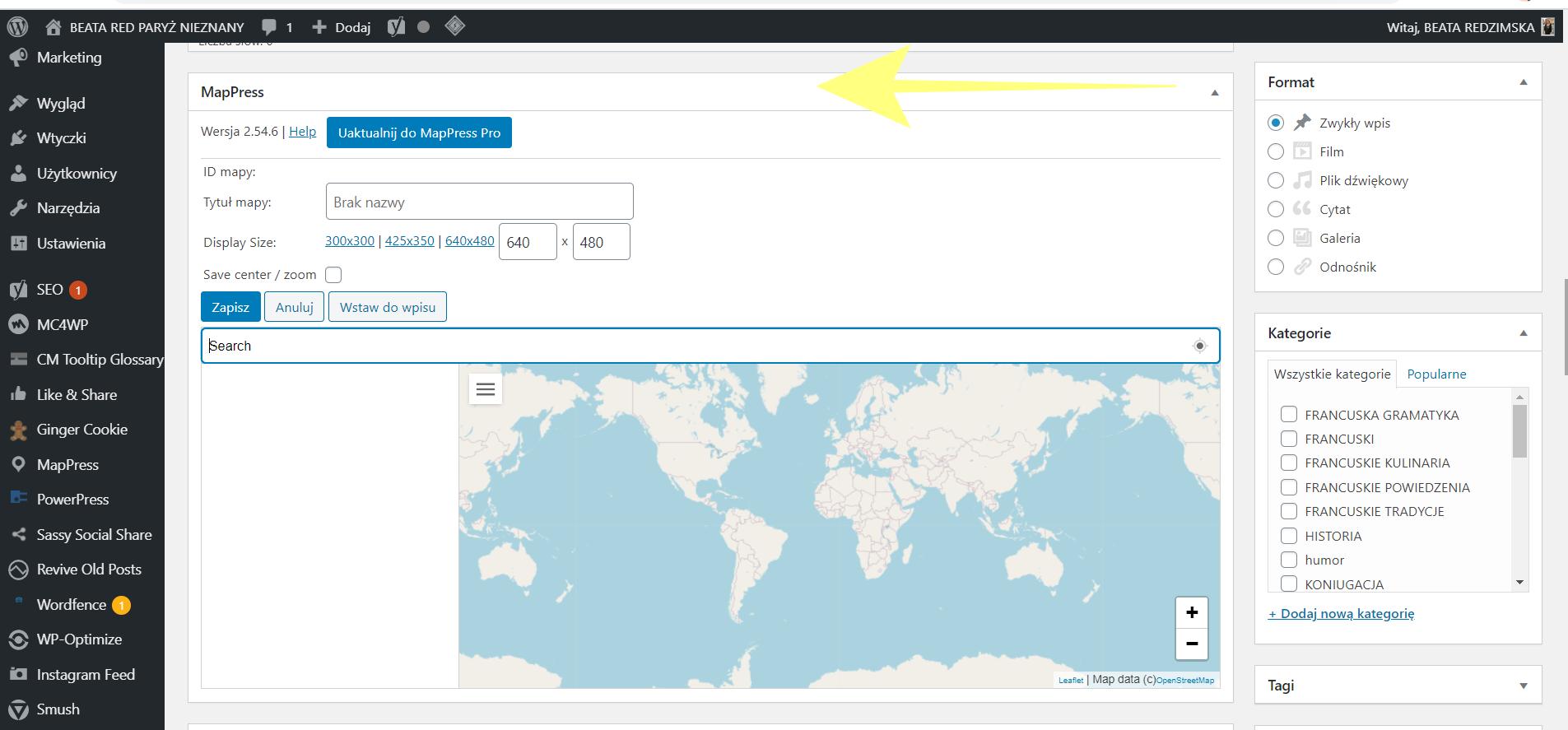Jak w najprostszy sposób dodać mapę na stronę www? WTYCZKI NA WORDPRESSA